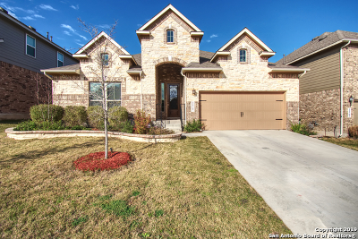 Bexar County Single Family Home For Sale: 11707 Caitlin Ash