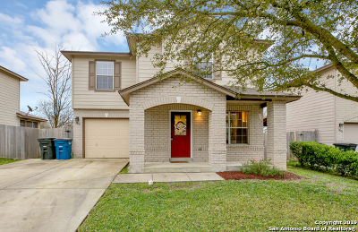 New Braunfels Single Family Home Active Option: 3838 Cherokee Blvd