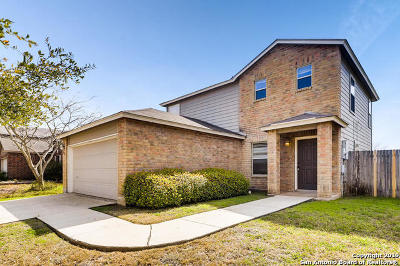 New Braunfels Single Family Home For Sale: 1366 Copper Point Dr