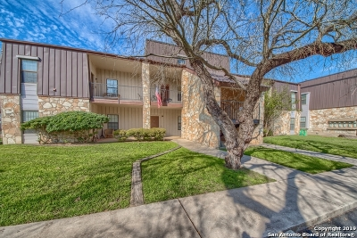 New Braunfels Condo/Townhouse Active Option: 472 Seele St #A-7