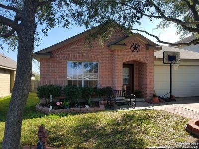 Single Family Home For Sale: 16910 Mandolino Ln