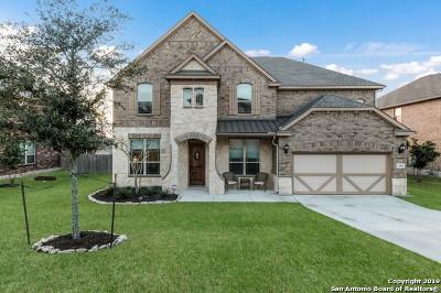Single Family Home For Sale: 23843 Castle Peak