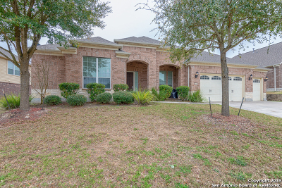 Bexar County Single Family Home For Sale: 12230 Prince Solms
