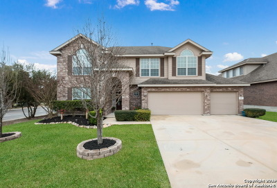 Bexar County Single Family Home For Sale: 443 Perch Meadows