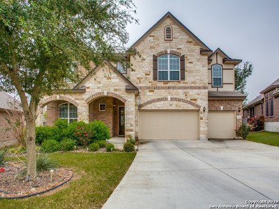 Bexar County Single Family Home For Sale: 12522 Magnolia Spring