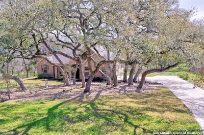 New Braunfels Single Family Home For Sale: 222 Gruene Haven