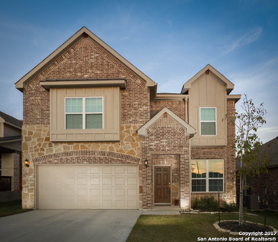 Boerne Single Family Home For Sale: 27414 Paraiso Sands
