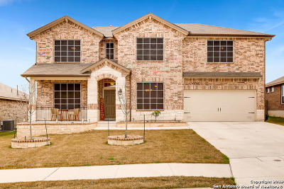 Cibolo Single Family Home For Sale: 129 White Rock