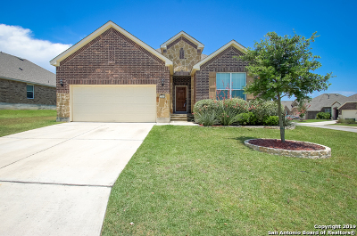 Boerne Single Family Home For Sale: 27403 Valle Bluff