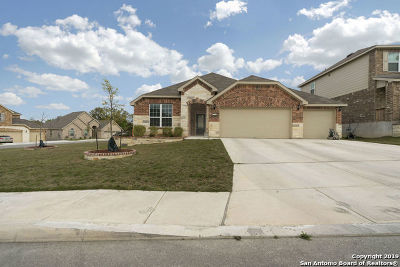 Bexar County Single Family Home For Sale: 12847 Sabinal River