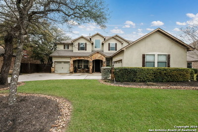Boerne Single Family Home For Sale: 28019 Carmel Valley