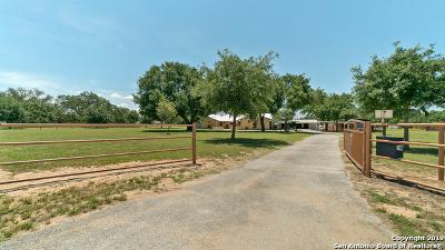Wilson County Single Family Home For Sale: 234 Bluebonnet Ln