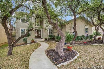 Boerne Single Family Home Active Option: 28023 Vine Cliff