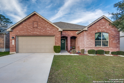 Helotes Single Family Home For Sale: 10435 Lupine Canyon