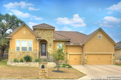 Boerne Single Family Home Price Change: 29030 Tivoli Way