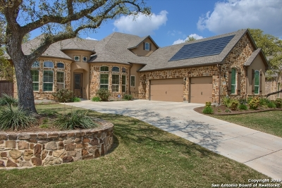 Boerne Single Family Home For Sale: 8007 Platinum Ct