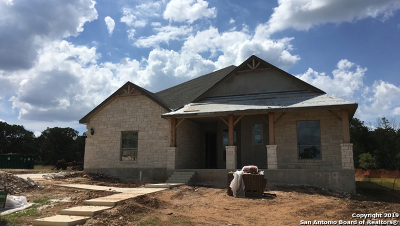New Braunfels Single Family Home For Sale: 279 Allemania Dr