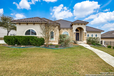 Heights At Stone Oak Single Family Home For Sale: 24231 Vecchio