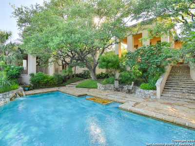 San Antonio Single Family Home For Sale: 28 Eton Green Circle