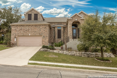 Helotes Single Family Home Active Option: 8467 Magdalena Run