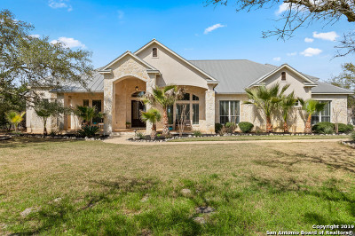 Boerne Single Family Home For Sale: 219 Greystone Circle