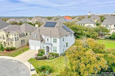 San Antonio Single Family Home For Sale: 2707 Mossgrove Park