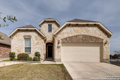 Helotes Single Family Home For Sale: 10627 Desert Rock