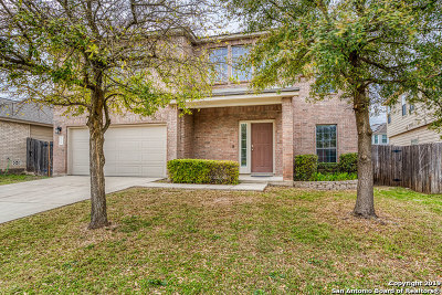 Helotes Single Family Home For Sale: 10727 Kobort Canyon