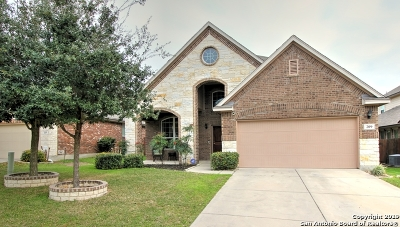 Cibolo Single Family Home New: 209 Fritz Way