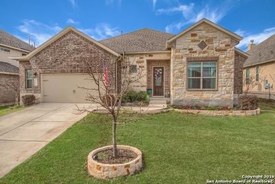 Bexar County Single Family Home For Sale: 11326 Phoebe Lace