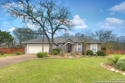 Boerne Single Family Home For Sale: 104 Kendall Pointe Dr