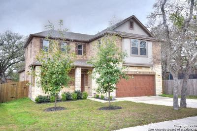San Marcos Single Family Home New: 309 Sky Springs Pass