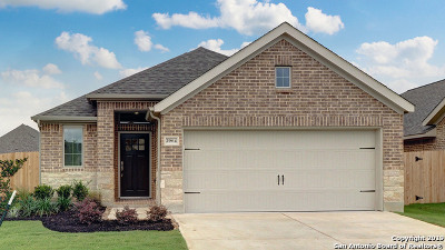 Seguin Single Family Home For Sale: 2964 Grove Terrace