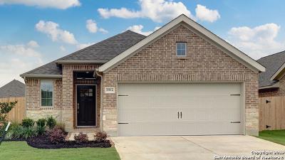 Seguin Single Family Home New: 2964 Grove Terrace
