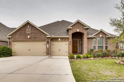 Bexar County Single Family Home For Sale: 6127 Cecilyann