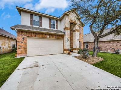 Single Family Home For Sale: 9639 Cafe Ter