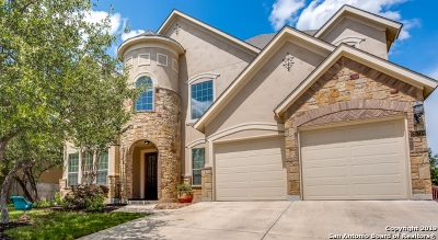Boerne Single Family Home For Sale: 28018 Vine Cliff