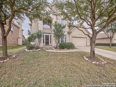 Helotes Single Family Home New: 9243 Trailing Fern