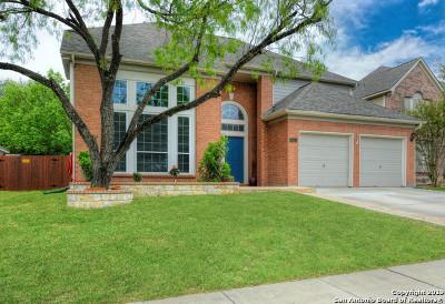 San Antonio Single Family Home New: 8850 Brae Ridge Dr