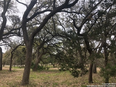 Helotes Residential Lots & Land For Sale: Lot 22 Canyon Creek