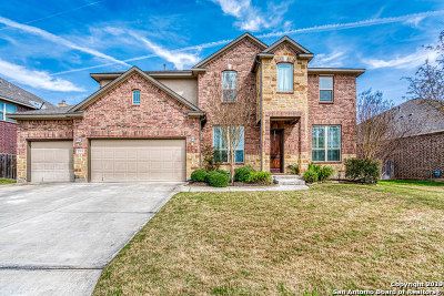 Boerne Single Family Home Active Option: 27074 Sable Run
