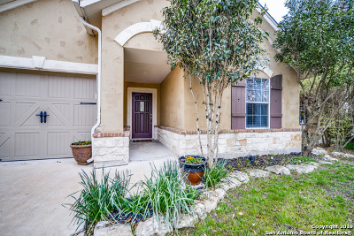 Boerne Single Family Home For Sale: 237 Cold River