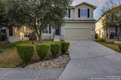Bexar County Single Family Home New: 163 Osprey Haven