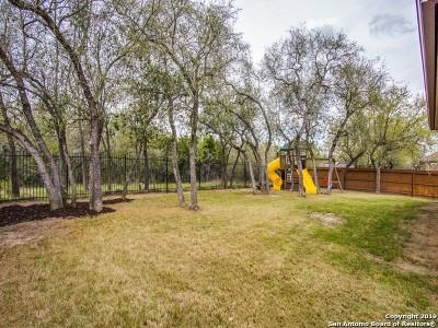 Bexar County Single Family Home New: 443 Redbird Chase