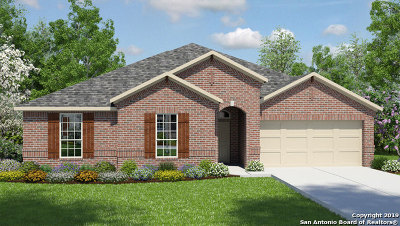Cibolo Single Family Home New: 132 Boulder View