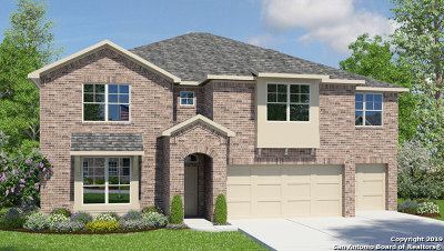 Cibolo Single Family Home New: 129 Boulder View