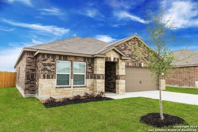 New Braunfels Single Family Home New: 6303 Juniper View