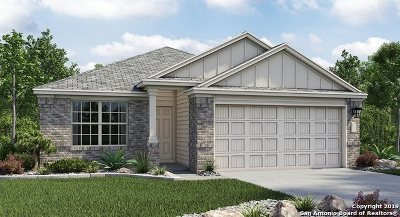 Converse Single Family Home New: 8407 Cassia Cove