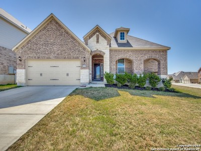 Bexar County Single Family Home New: 12850 Sabinal River