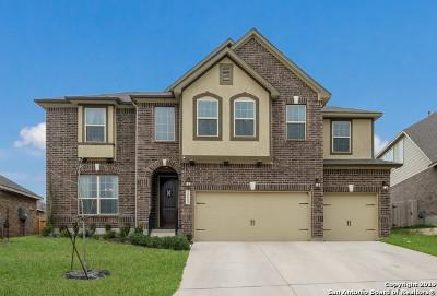 San Antonio Single Family Home New: 25642 Vista Bella